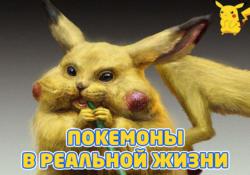 Как выглядят покемоны в реальной жизни ?